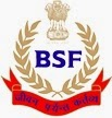 BSF, Sub Inspector Engg Set up, JE Works Electrical